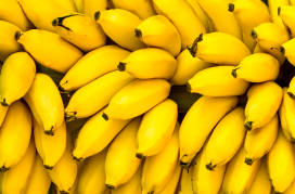 bananas-extintas