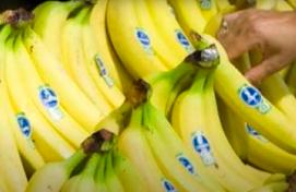 mercados-de-banano-emergentes