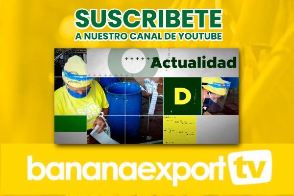 suscribete-bananaexport
