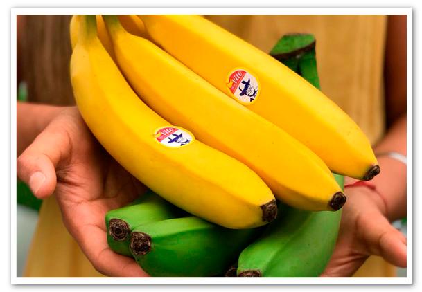 Ecuador-no-paro-su-racha-exportadora-de-banano