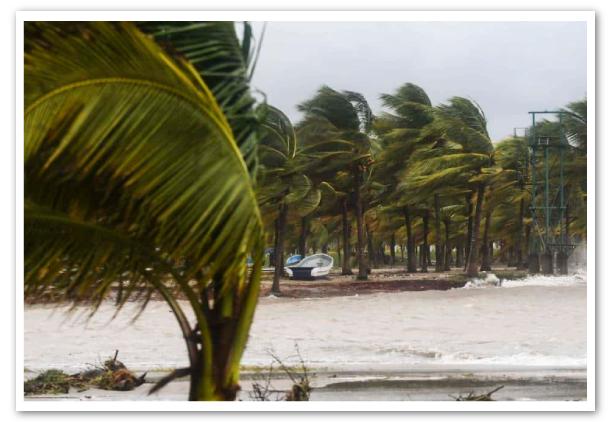 Solidaridad-con-los-productores-bananeros-hondurenos-1