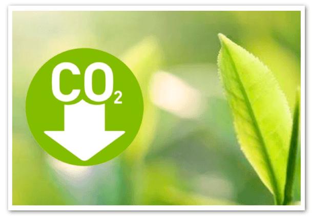 carbono-neutro-guayaquil