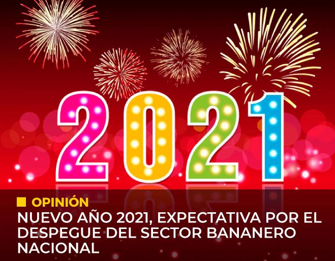 ano-nuevo-2021