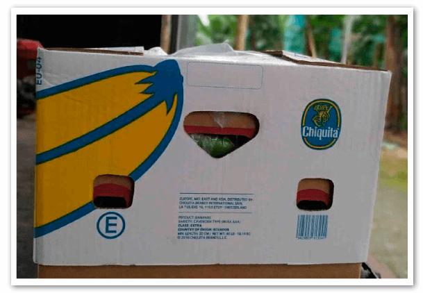 Estructura-comercial-del-negocio-bananero-3
