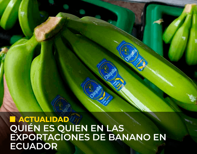 Quienes-son-quien-en-las-exportaciones-de-banano-en-Ecuador