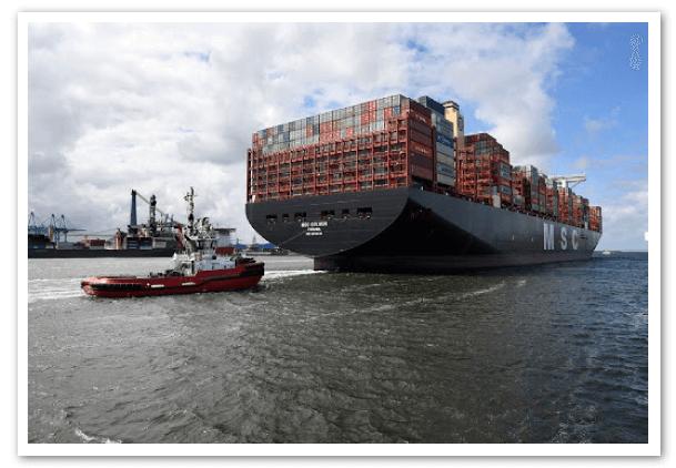 MSC-reporta-otro-ano-exitoso-para-sus-servicios-de-carga