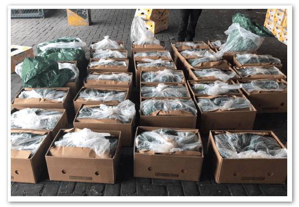 droga-en-contenedores-de-banano