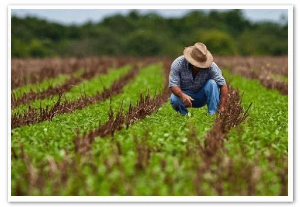 Ministra-de-Agricultura-y-Ganaderia-ecuador-2